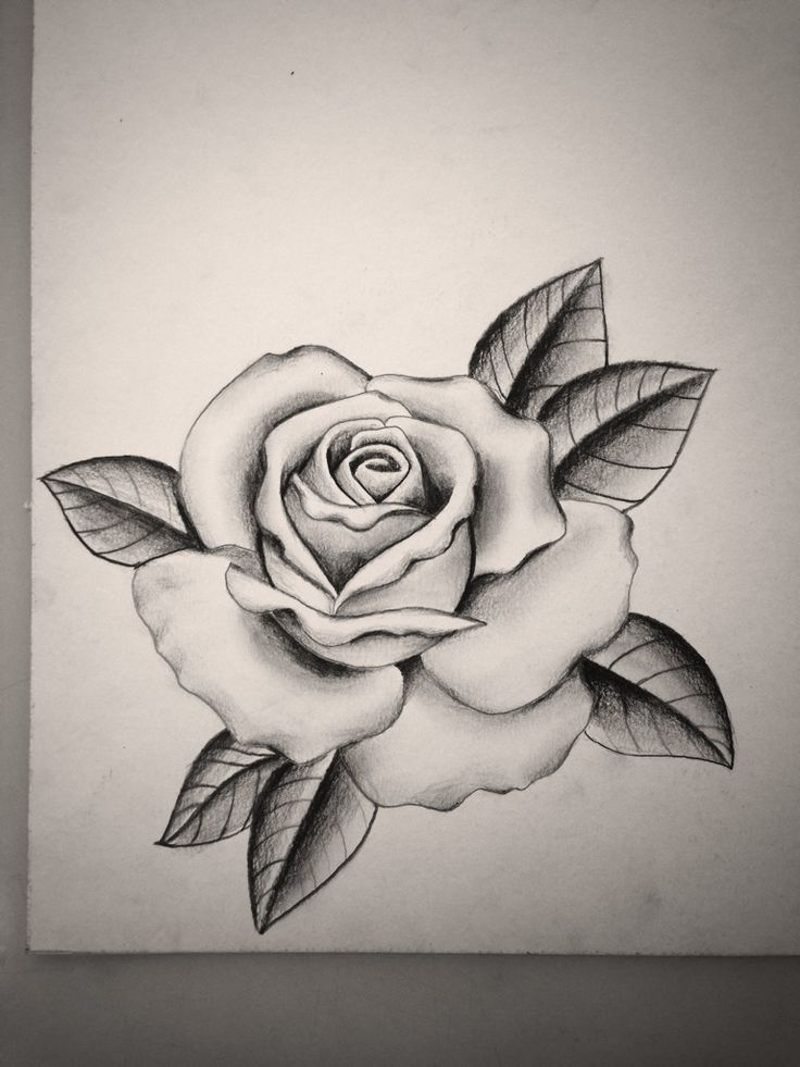 Black And Grey Rose By Mike Attack Instagram Mikeattack Ideas And Designs