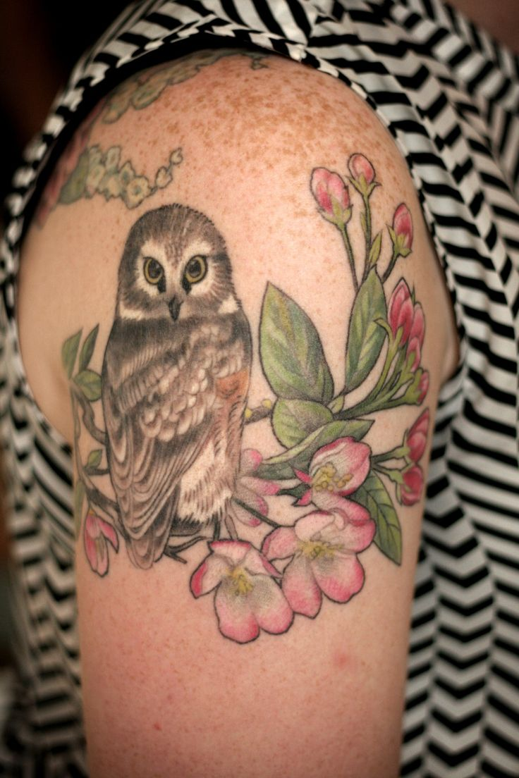 Mom's Birds And Flowers Daughter's Owl By Alice Kendall Ideas And Designs