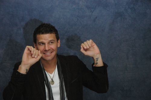 Bones 6 Facts You Didn T Know About David Boreanaz Ideas And Designs
