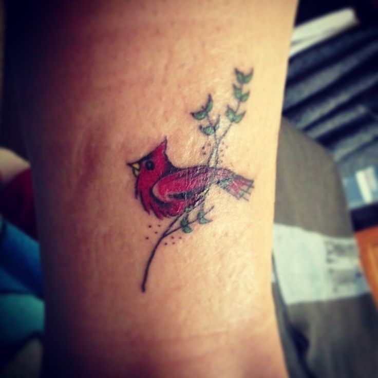 1000 Ideas About Cardinal Tattoos On Pinterest Tattoos Ideas And Designs