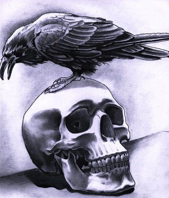 Crow Tattoo Designs Crow Tattoo Designs Tattoo Ideas Ideas And Designs