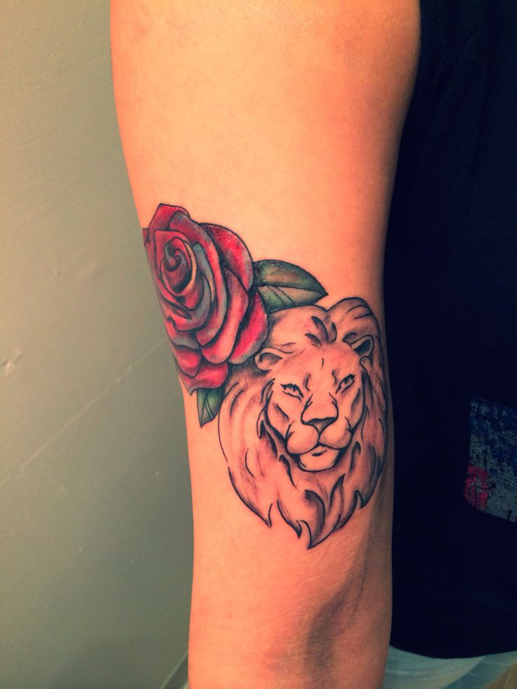 Lion Tattoo With Rose Colored Lion Rose Tattoo Ideas And Designs