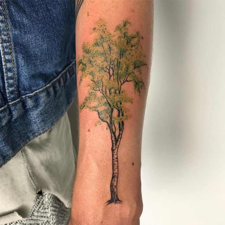 25 Best Ideas About Birch Tree Tattoos On Pinterest Ideas And Designs