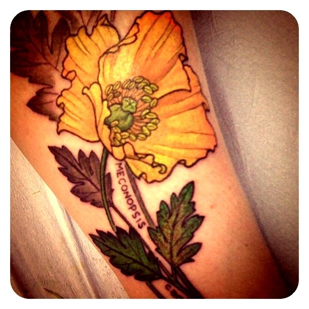 314 Best Images About Mucha Art Nouveau Tattoos On Ideas And Designs