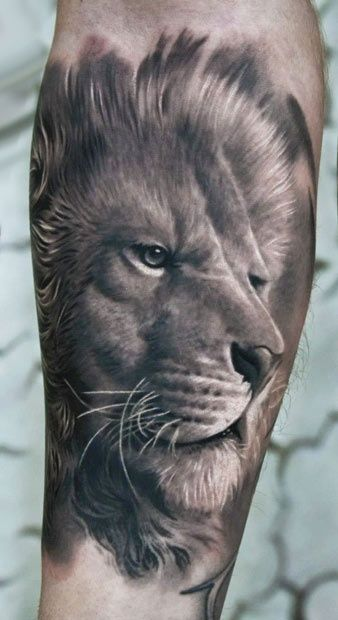 3D Lion Tattoo Lion Tattoo Pinterest Artworks Ideas And Designs