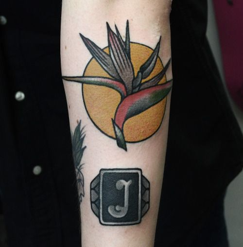 25 Best Ideas About Bird Of Paradise Tattoo On Pinterest Ideas And Designs