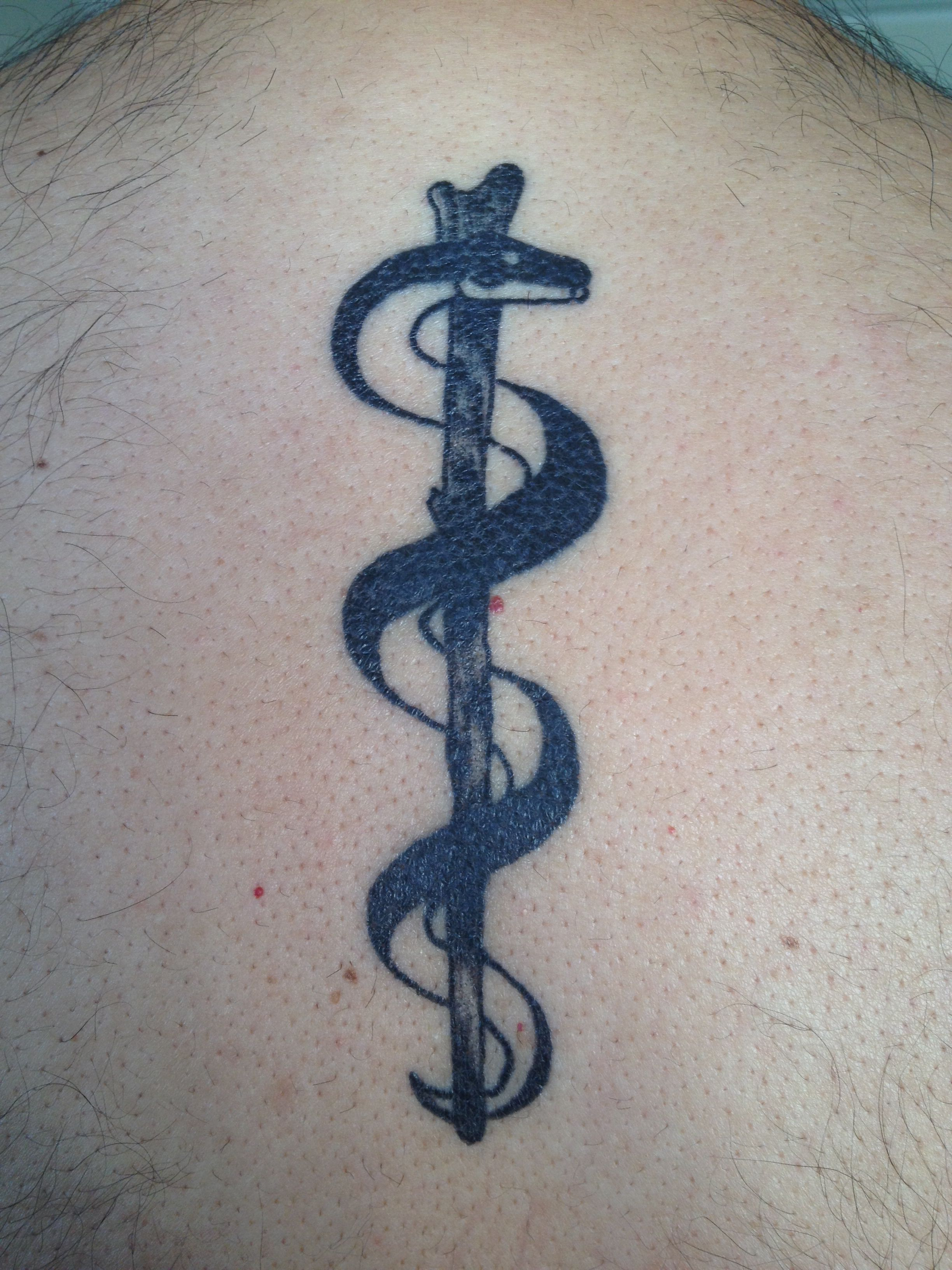 Rod Of Asclepius Tattoo In My Upperback My Husband S Ideas And Designs