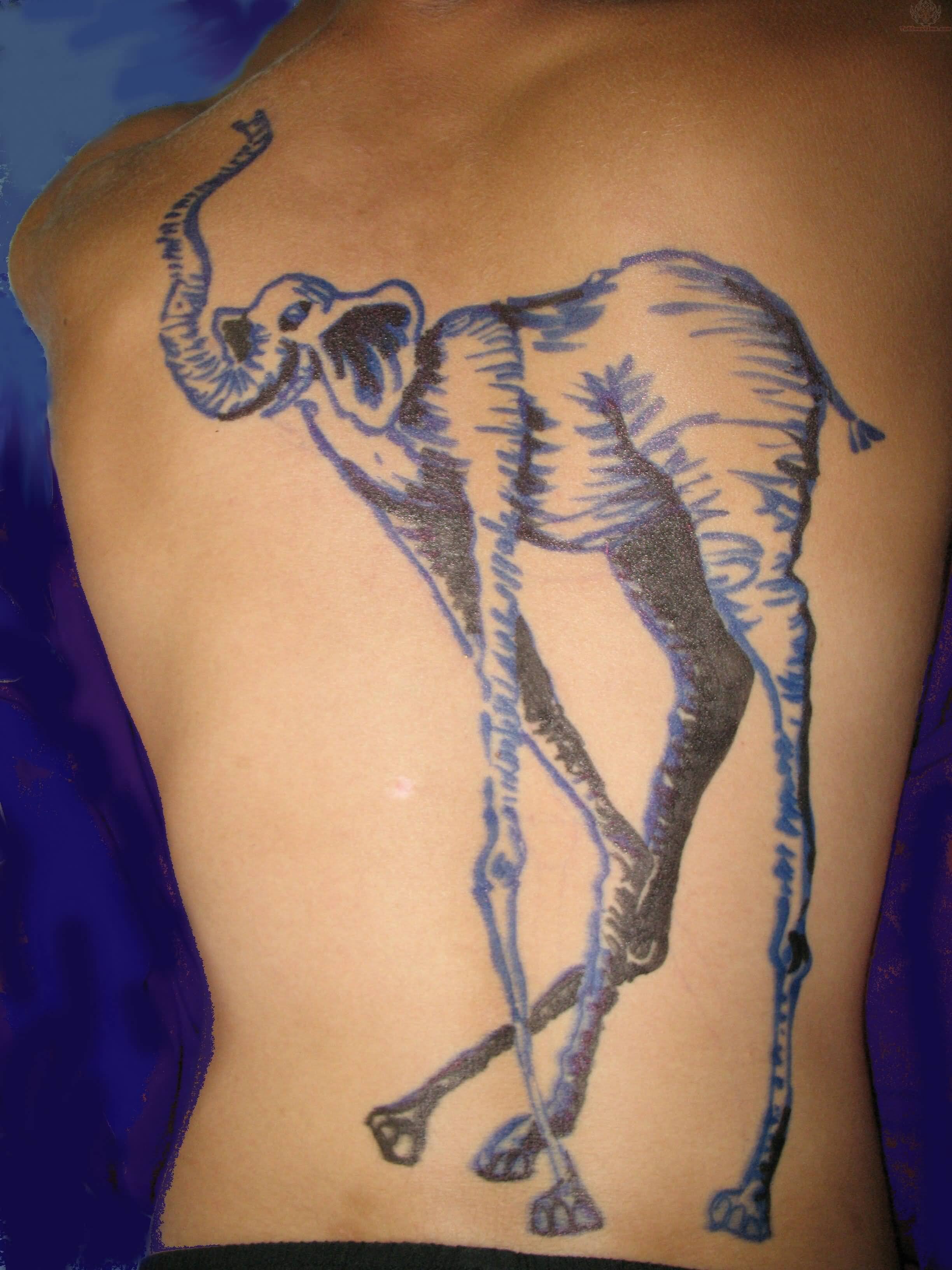 50 Elephant Tattoos On Back Ideas And Designs
