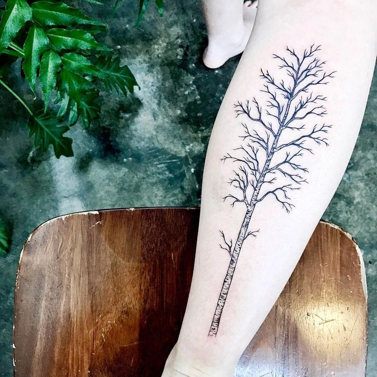 51 Birch Tree Meaningful Tattoos Ideas Ideas And Designs
