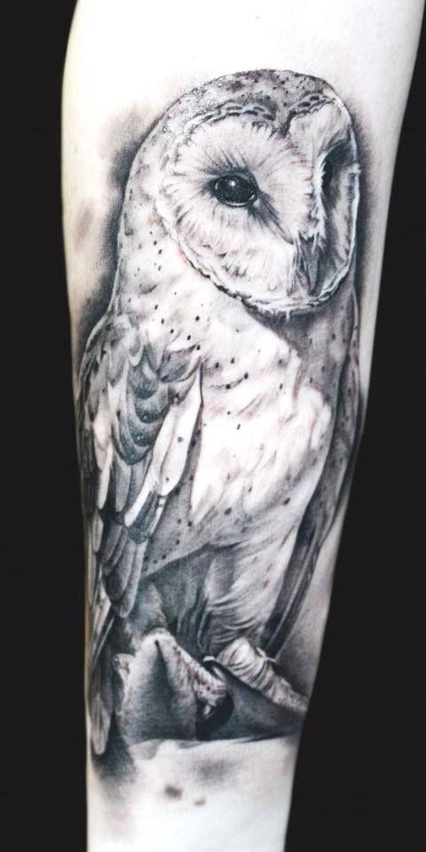 barn owl tattoo - 480×960