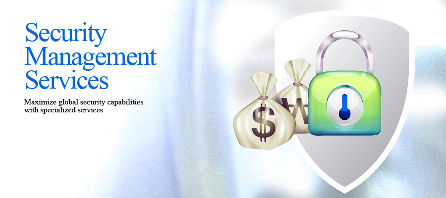 Management Security Service Inc