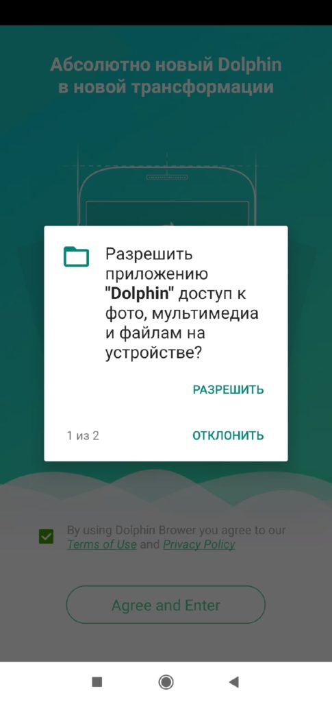 Dolphin Granting Rights