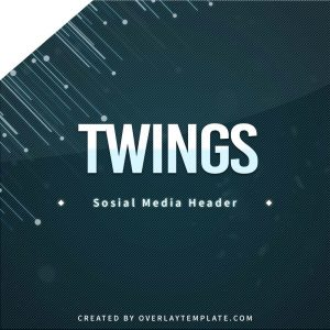 banner,thumbnail,twings,overlaytemplate.com