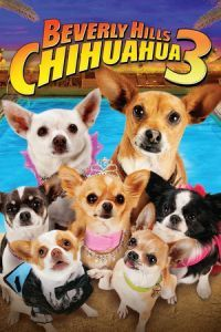 Nonton Film Beverly Hills Chihuahua 3: Viva La Fiesta! (2012) Subtitle Indonesia Streaming Movie Download