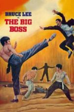Nonton Film The Big Boss (1971) Subtitle Indonesia Streaming Movie Download