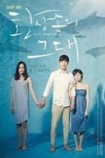 Nonton Film Dear Dolphin (2013) Subtitle Indonesia Streaming Movie Download