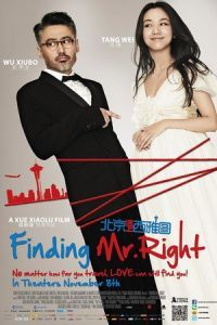 Nonton Film Finding Mr. Right (2013) Subtitle Indonesia Streaming Movie Download