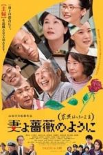 Nonton Film What a Wonderful Family! 3: My Wife, My Life (2018) Subtitle Indonesia Streaming Movie Download