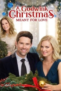 Nonton Film A Godwink Christmas: Meant for Love (2019) Subtitle Indonesia Streaming Movie Download