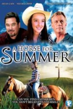 Nonton Film A Horse for Summer (2015) Subtitle Indonesia Streaming Movie Download