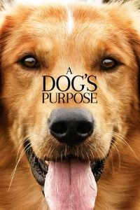 Nonton Film A Dog's Purpose (2017) Subtitle Indonesia Streaming Movie Download