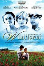 Nonton Film Wildflower (1991) Subtitle Indonesia Streaming Movie Download