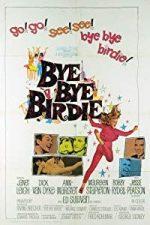 Nonton Film Bye Bye Birdie (1963) Subtitle Indonesia Streaming Movie Download