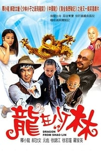 Nonton Film Dragon from Shaolin (1996) Subtitle Indonesia Streaming Movie Download