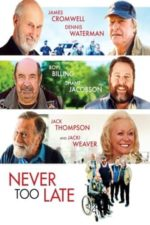 Nonton Film Never Too Late (2020) Subtitle Indonesia Streaming Movie Download