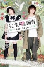 Nonton Film Perfect Education: Maid, for You (2010) Subtitle Indonesia Streaming Movie Download