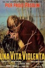 Nonton Film Violent Life (1962) Subtitle Indonesia Streaming Movie Download