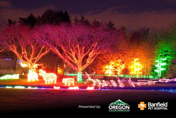 Zoo Lights Oregon