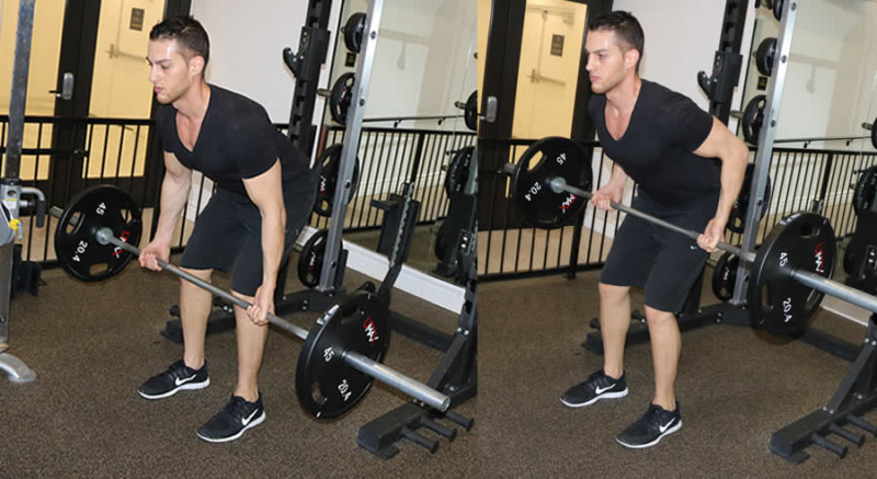 Underhand Barbell Row - The Optimal You | Online Personal ...