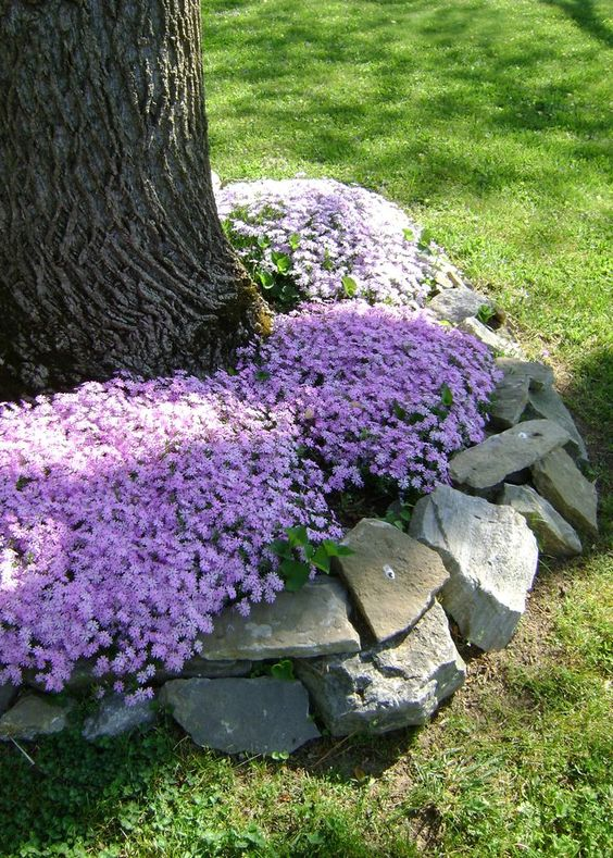 18 Genius Flower Beds Around Trees You Need To See The