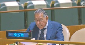 Permanent Representative of Pakistan, Ambassador Munir Akram is speaking during the High-Level Forum