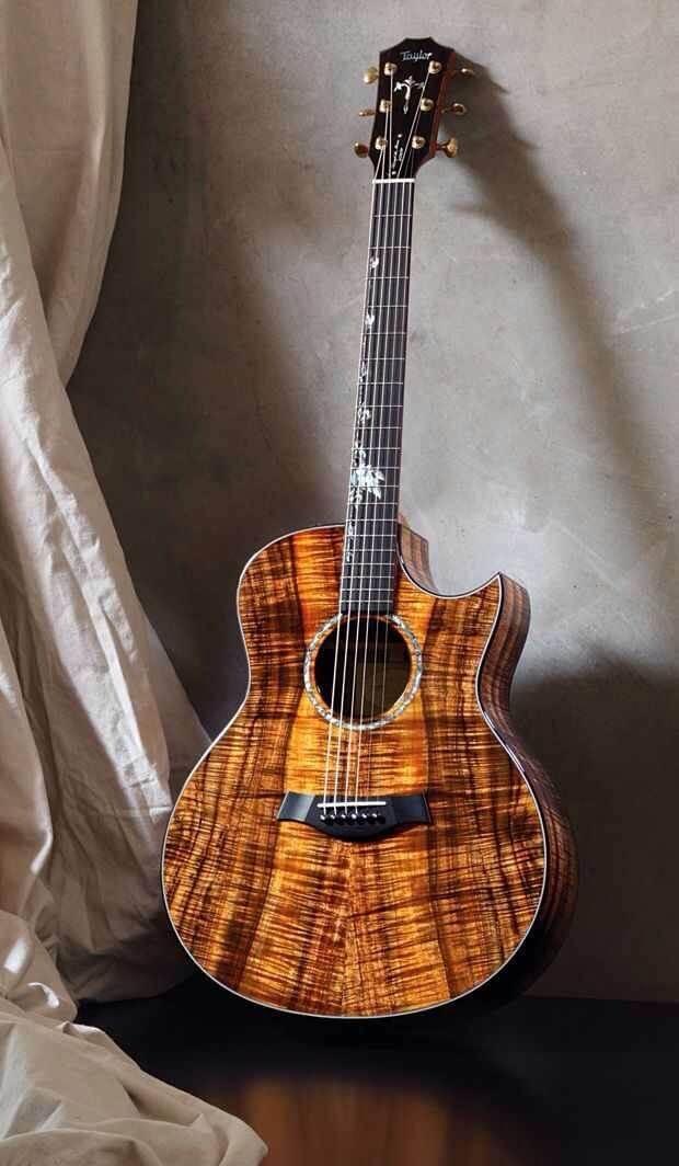 Best Wood Guitar Body