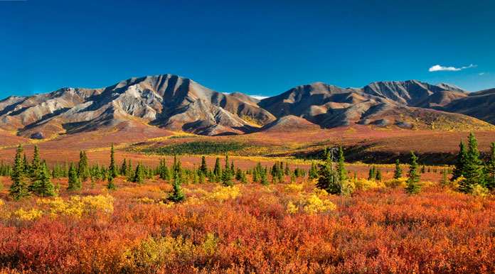 Best Time View Northern Lights Alaska