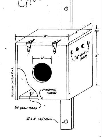 Birdhouse and Nest Box Plans for Several Bird Species ...