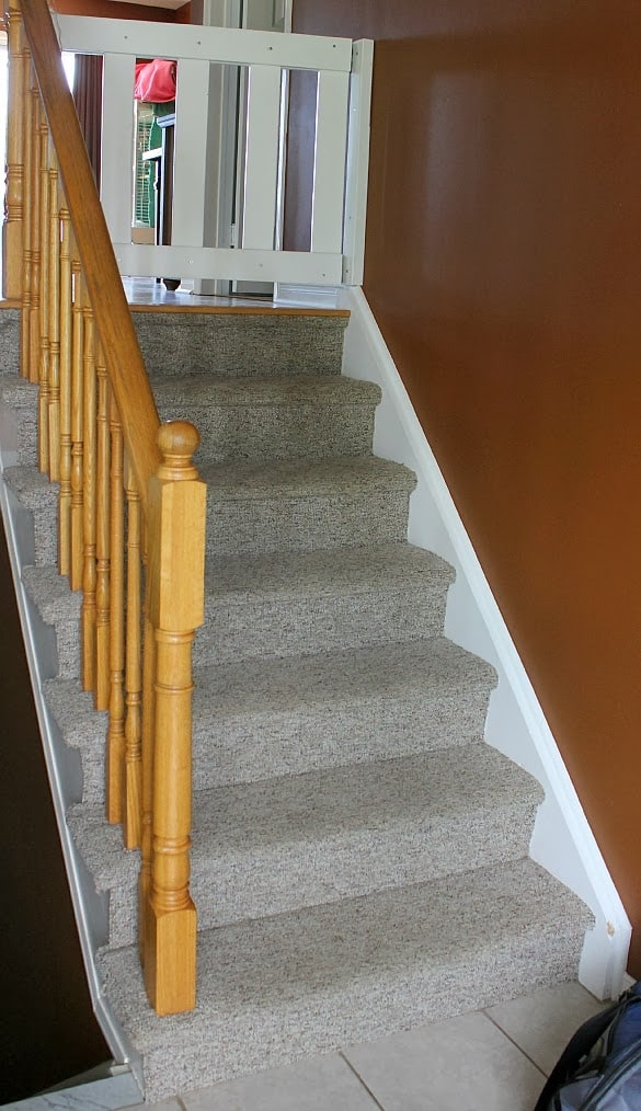 Stairway Remodel Part 1 Ripping Out Old Carpet And Finding | Fixing Carpet On Stairs | Wood | Staircase | Runner | Stair Nosing | Install