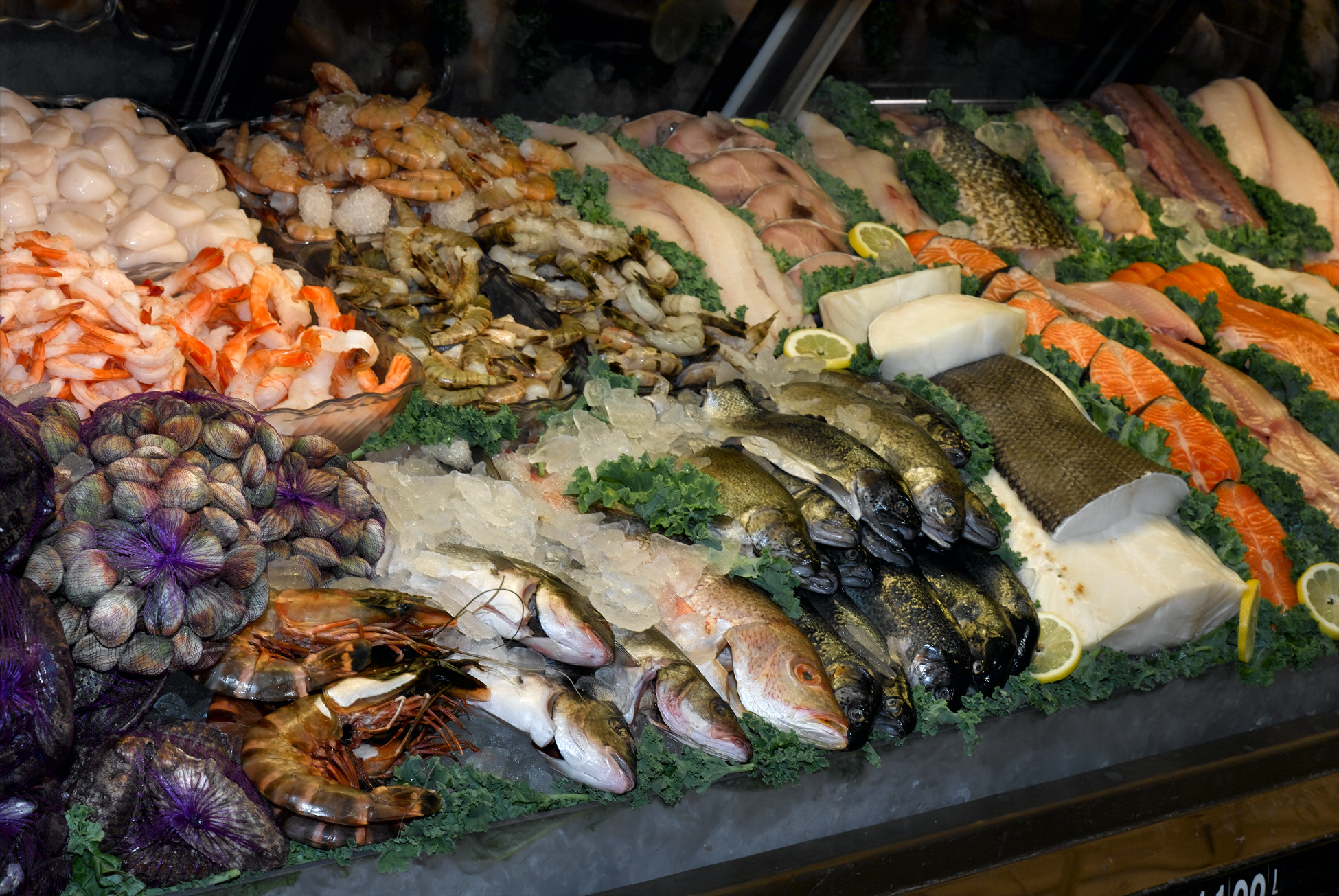 Different Types Of Fish And How To Cook Them