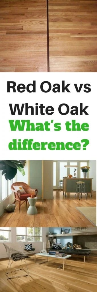 And Red Difference White Oak Between Oak