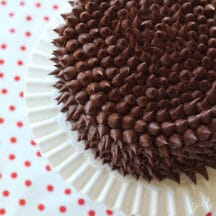chocolate frosted cake on white cake plate on red and white polka dot tablecloth