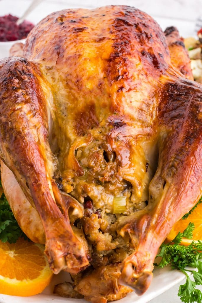 Closeup of stovetop stuffing inside roasted turkey on white platter with greens and orange slices