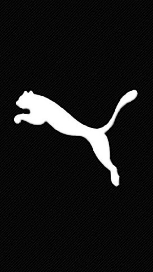 DigInPix - Entity - Puma