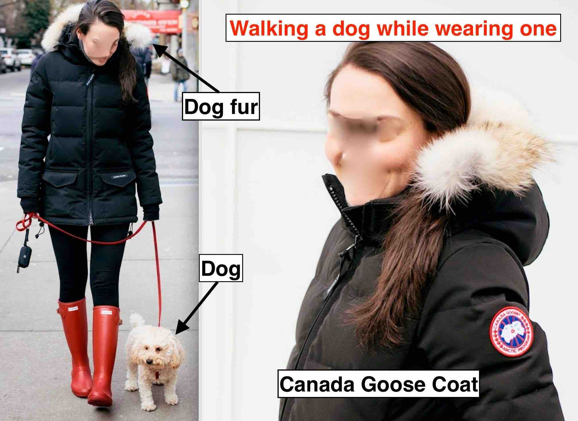 Canada Goose Maps Out International Expansion Fortune Once anti logo Dani Reiss leverages Canada Goose brand appeal in Canada Goose turns this year but as a ...