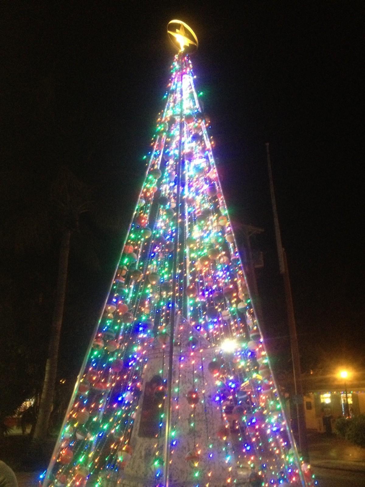 December Fishing Key West