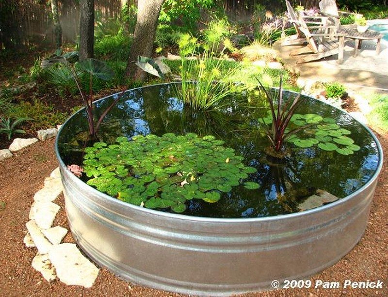 Pond And Fountain Ideas
