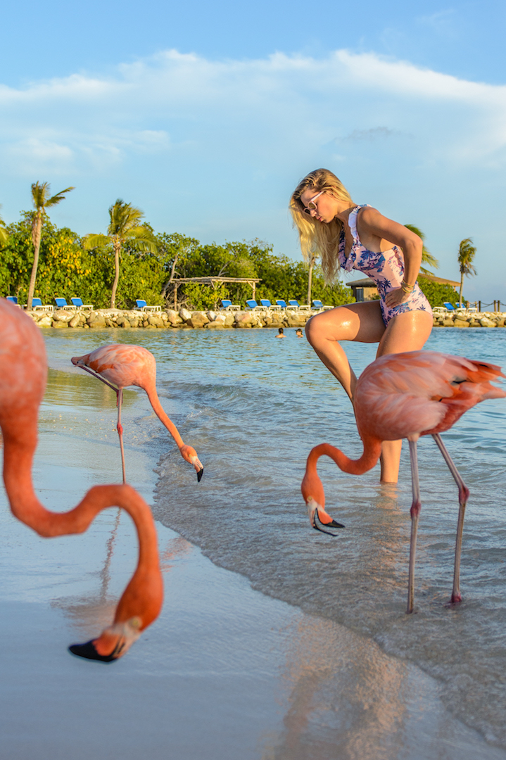 Lesley Murphy playing with flamingoes in Aruba