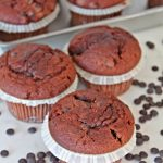 Moist chocolate chip muffins