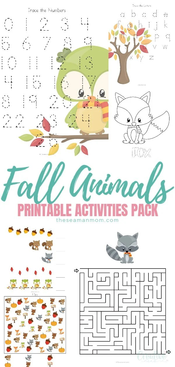 Have you been looking for autumn activities or fall games for kids? This fall worksheets pack has a lot of content developed around autumn animals activities, to keep kids entertained, while learning about fall animals, tracing letters, counting, drawing and more! via @petroneagu